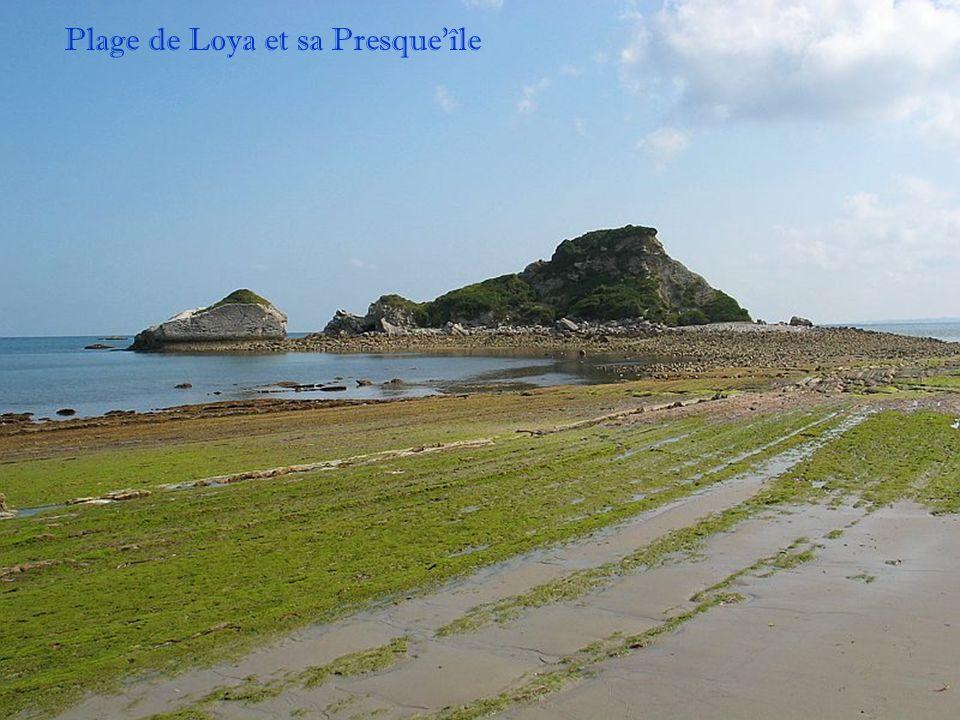 Plage de Loya et sa Presque'île