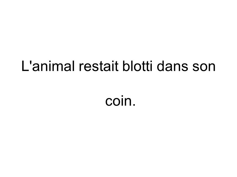 L animal restait blotti dans son coin.