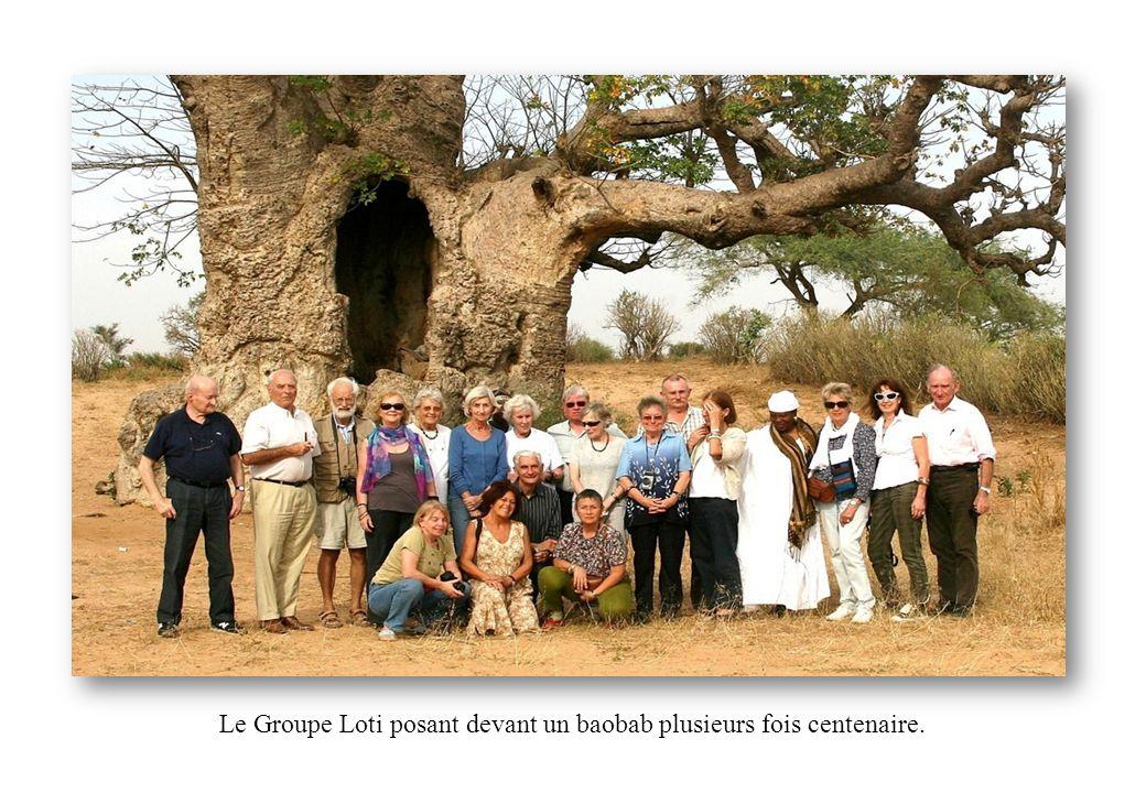 Le Groupe Loti posant devant un baobab plusieurs fois centenaire.