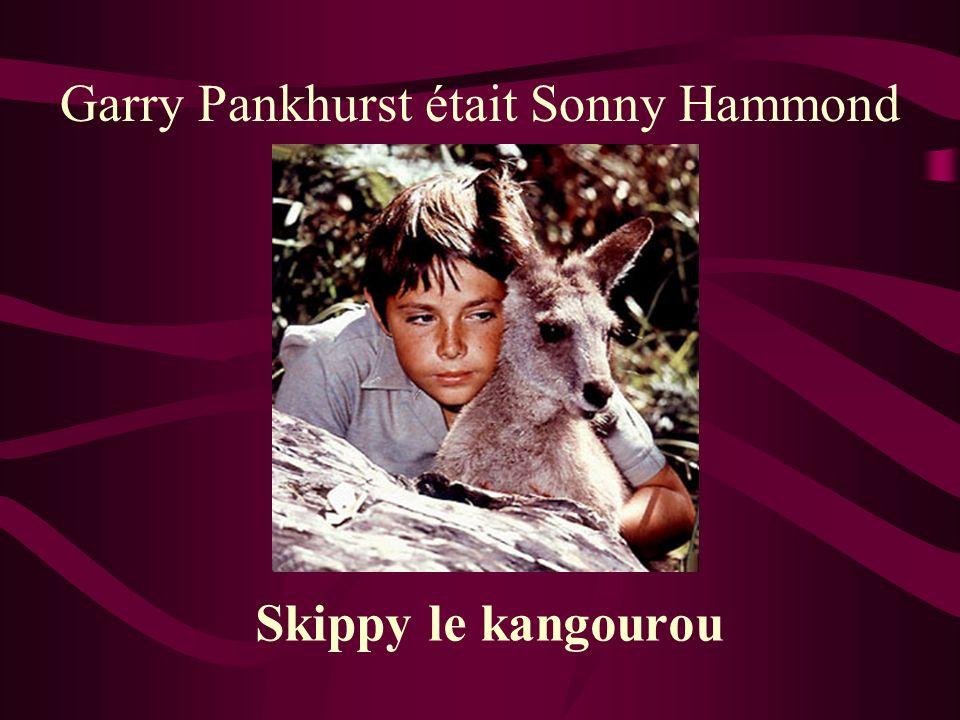 Garry Pankhurst était Sonny Hammond