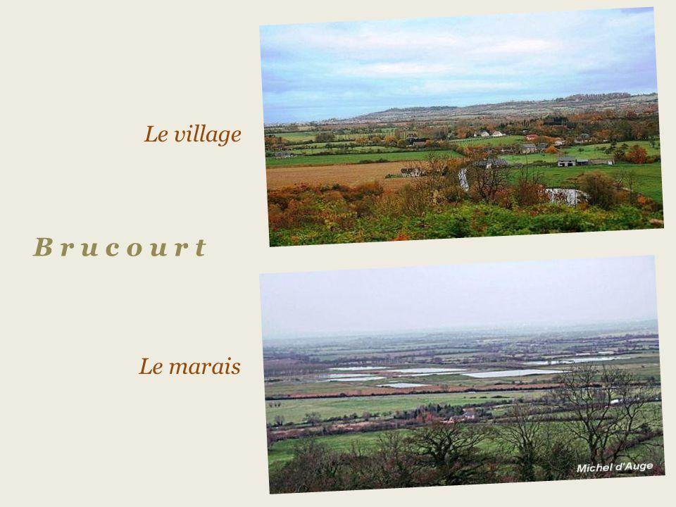 Le village B r u c o u r t Le marais