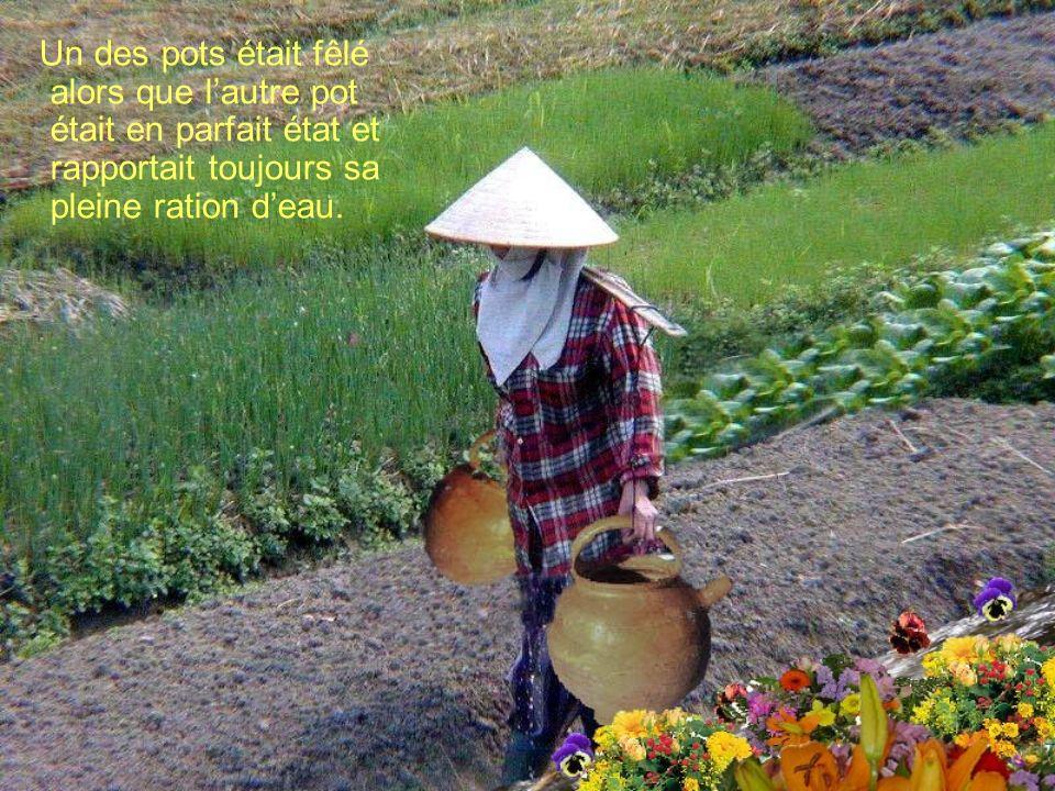 Un des pots était fêlé alors que l'autre pot était en parfait état et rapportait toujours sa pleine ration d'eau.