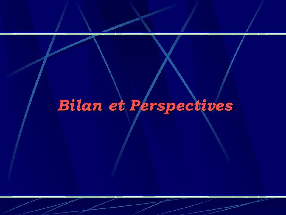 Bilan et Perspectives