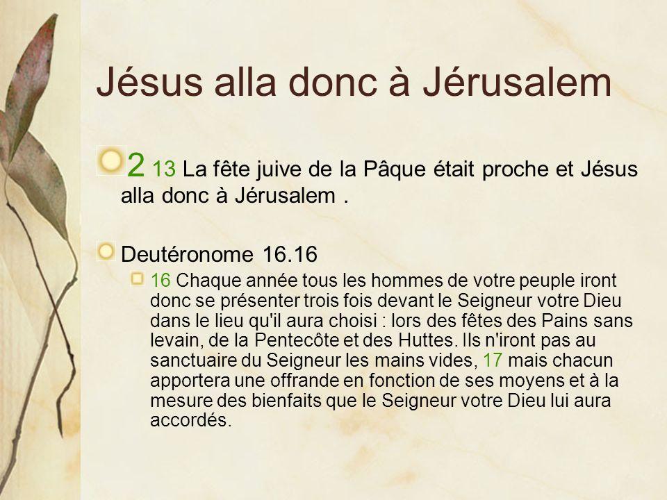 Jésus alla donc à Jérusalem