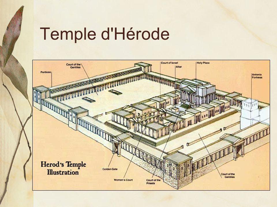 Temple d Hérode