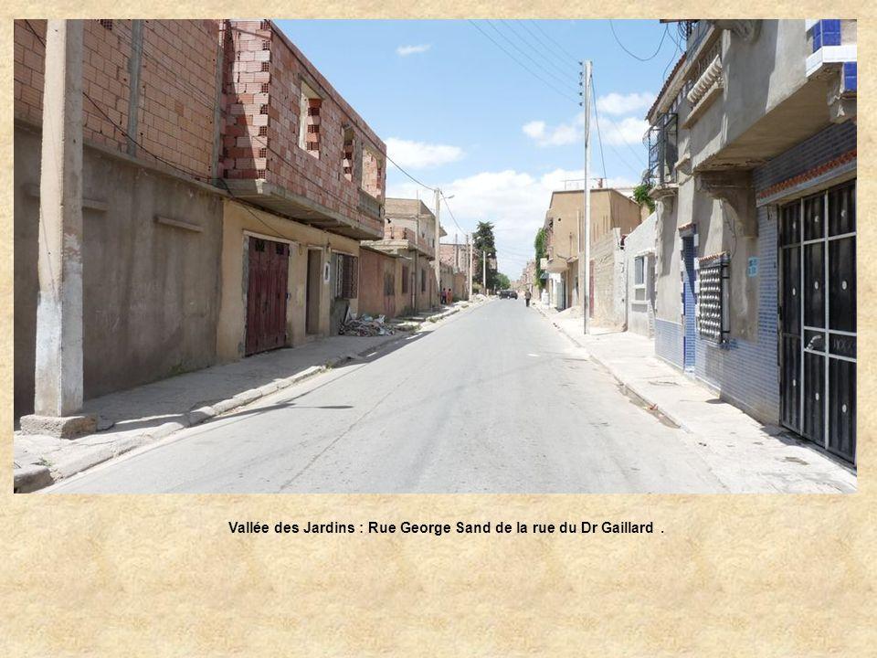 Vallée des Jardins : Rue George Sand de la rue du Dr Gaillard .