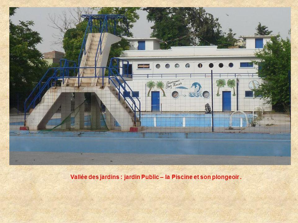 Vallée des jardins : jardin Public – la Piscine et son plongeoir .