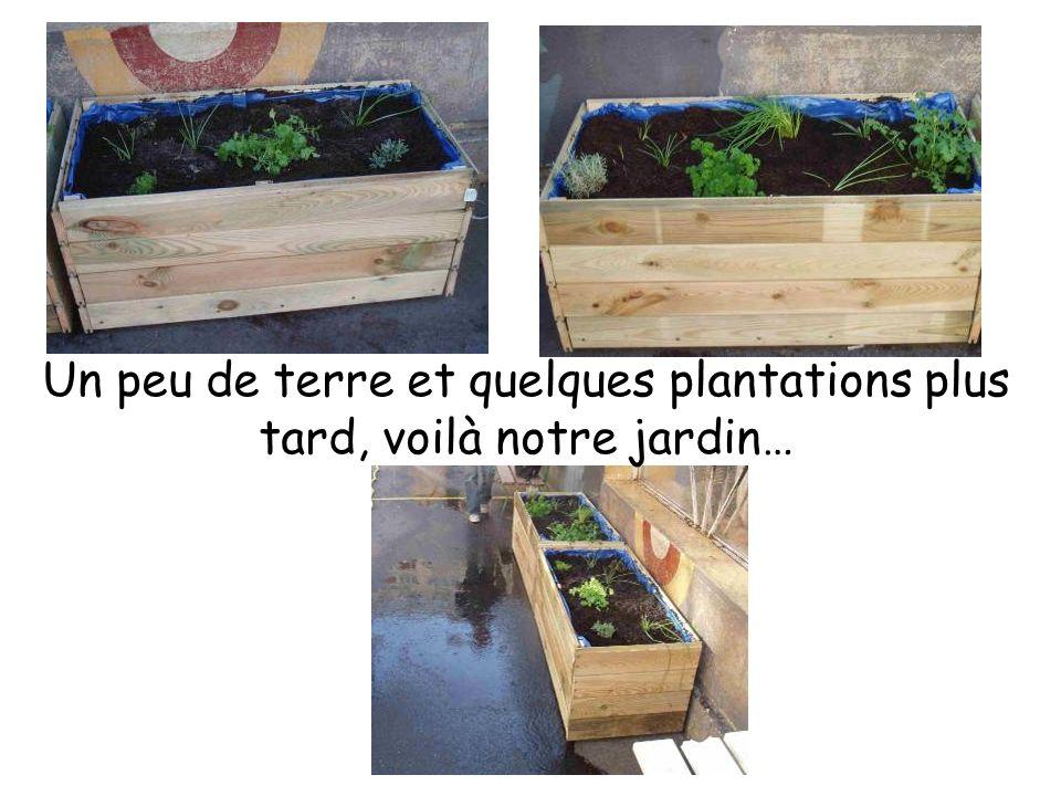 Un peu de terre et quelques plantations plus tard, voilà notre jardin…