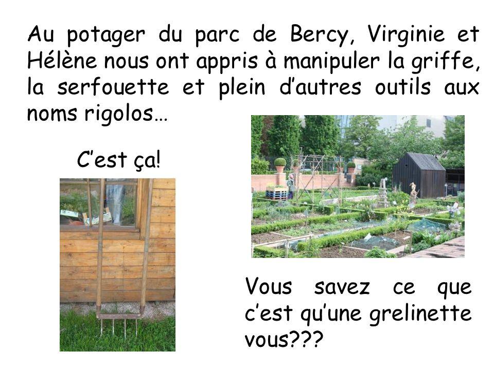 Au potager du parc de Bercy, Virginie et Hélène nous ont appris à manipuler la griffe, la serfouette et plein d'autres outils aux noms rigolos…