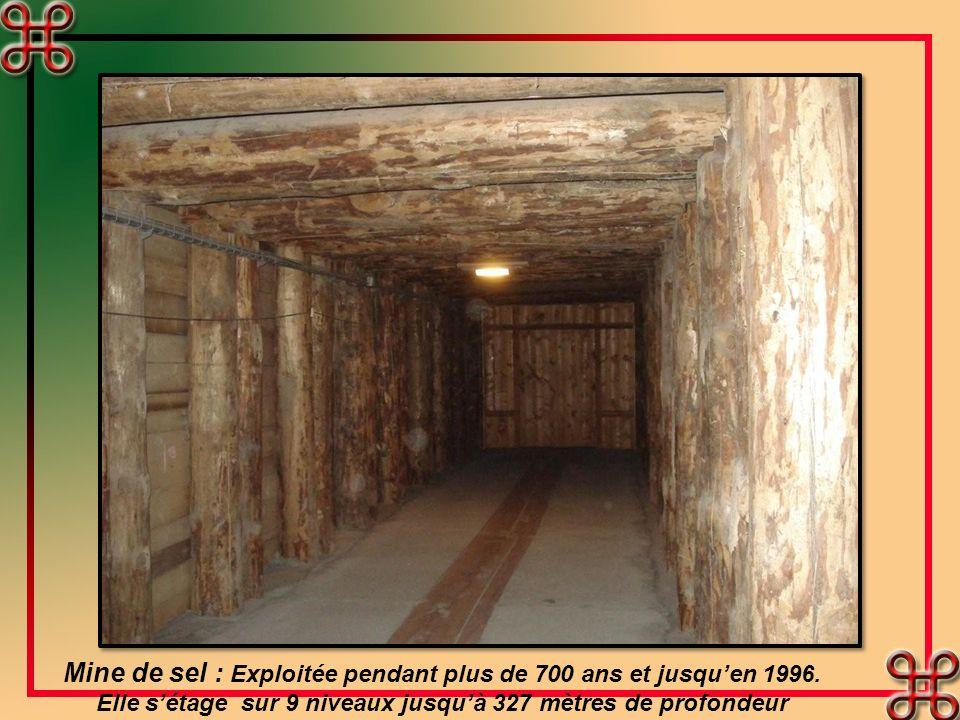 Mine de sel : Exploitée pendant plus de 700 ans et jusqu'en 1996.