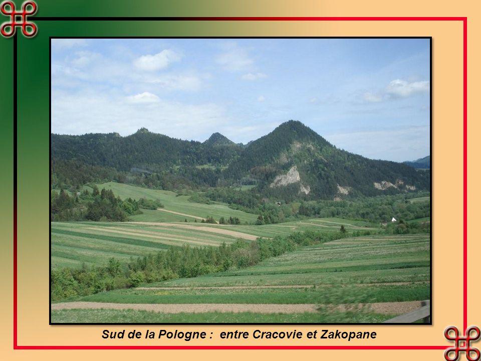 Sud de la Pologne : entre Cracovie et Zakopane