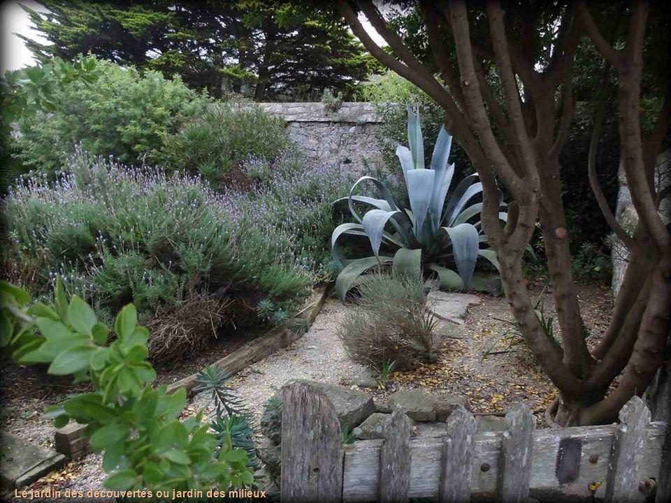 Le jardin des découvertes ou jardin des milieux