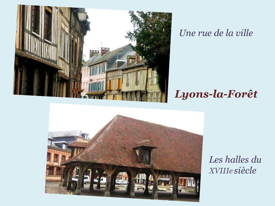 Une rue de la ville Lyons-la-Forêt Les halles du XVIIIe siècle