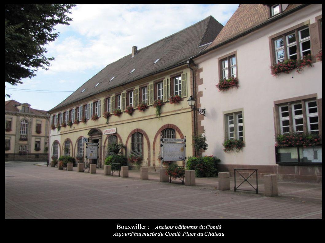 Bouxwiller : Anciens bâtiments du Comté