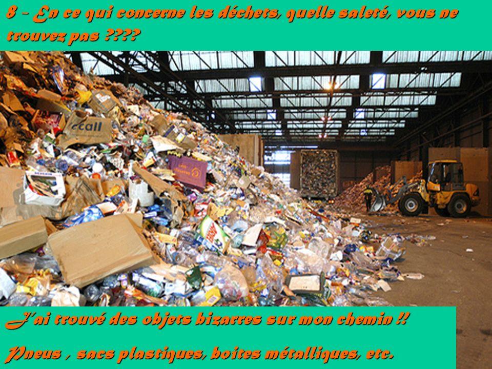 8 - En ce qui concerne les déchets, quelle saleté, vous ne trouvez pas