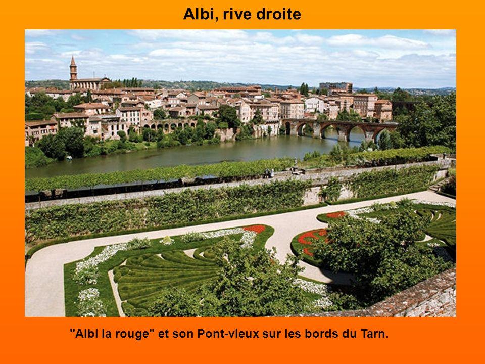 Albi, rive droite Albi la rouge et son Pont-vieux sur les bords du Tarn.