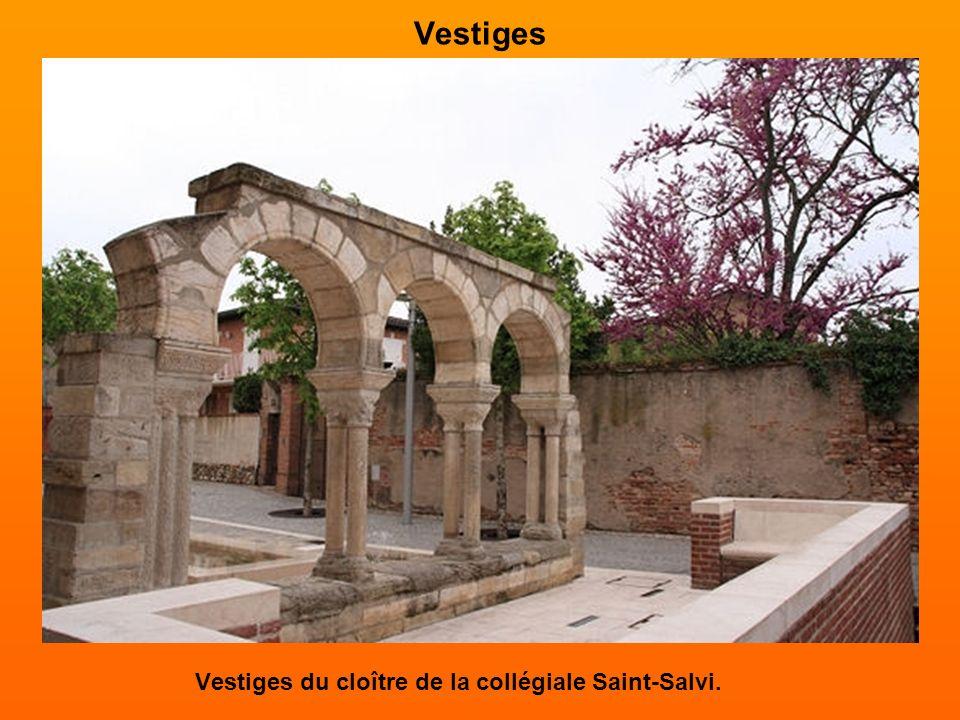 Vestiges Vestiges du cloître de la collégiale Saint-Salvi.