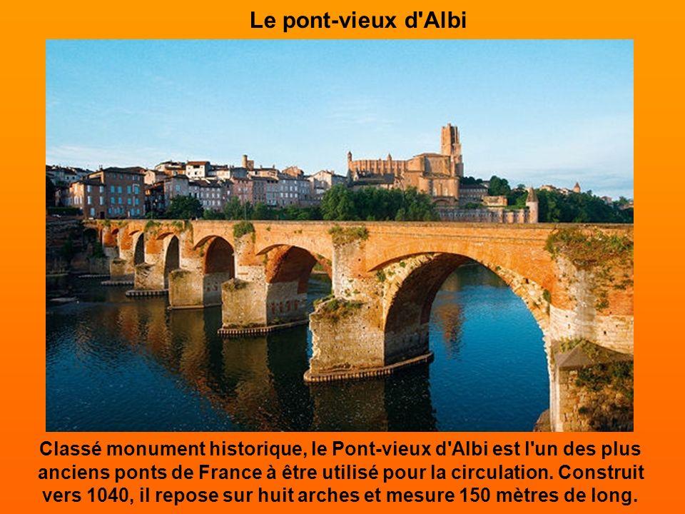 Le pont-vieux d Albi