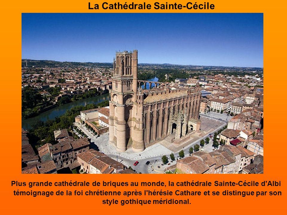 La Cathédrale Sainte-Cécile