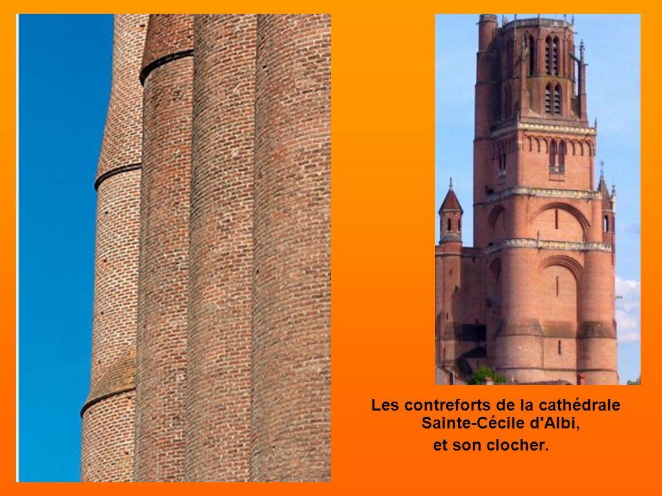 Les contreforts de la cathédrale Sainte-Cécile d Albi,