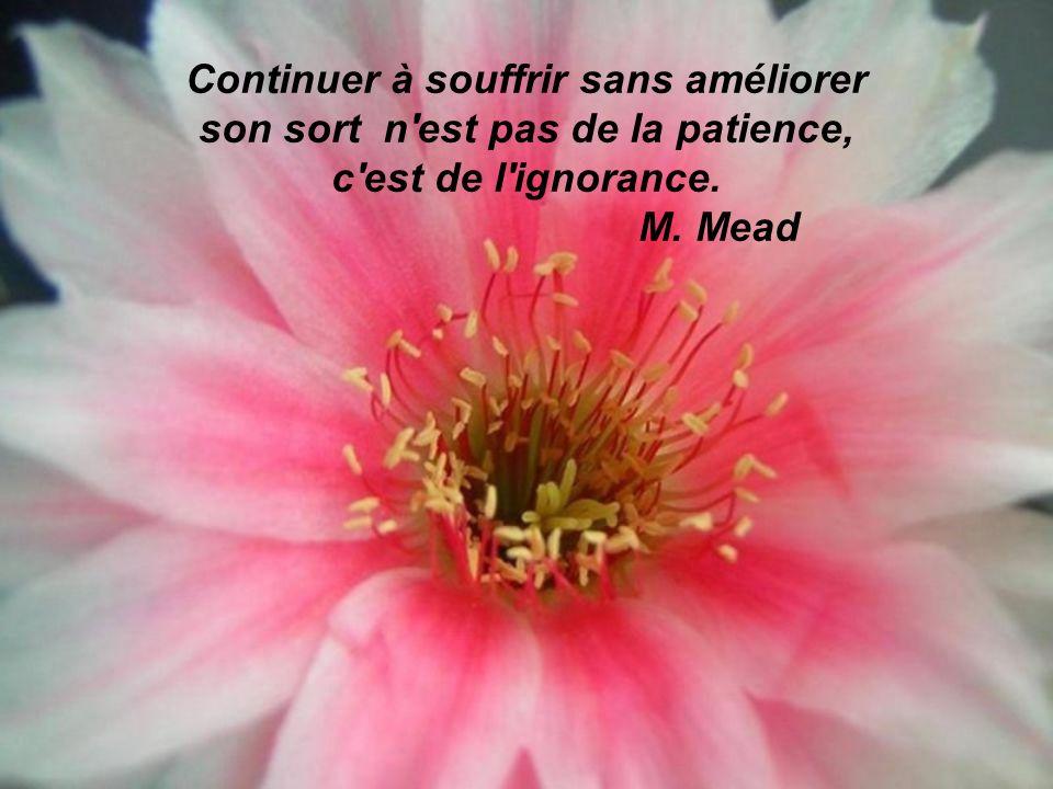 Continuer à souffrir sans améliorer son sort n est pas de la patience, c est de l ignorance. M. Mead