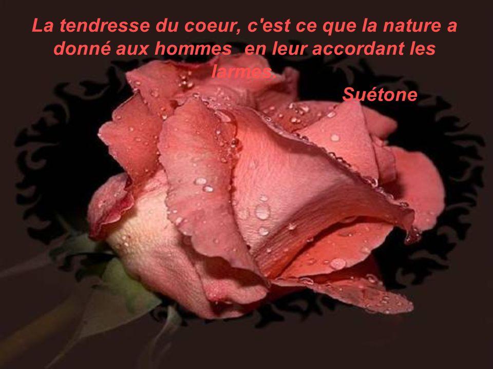 La tendresse du coeur, c est ce que la nature a donné aux hommes en leur accordant les larmes.