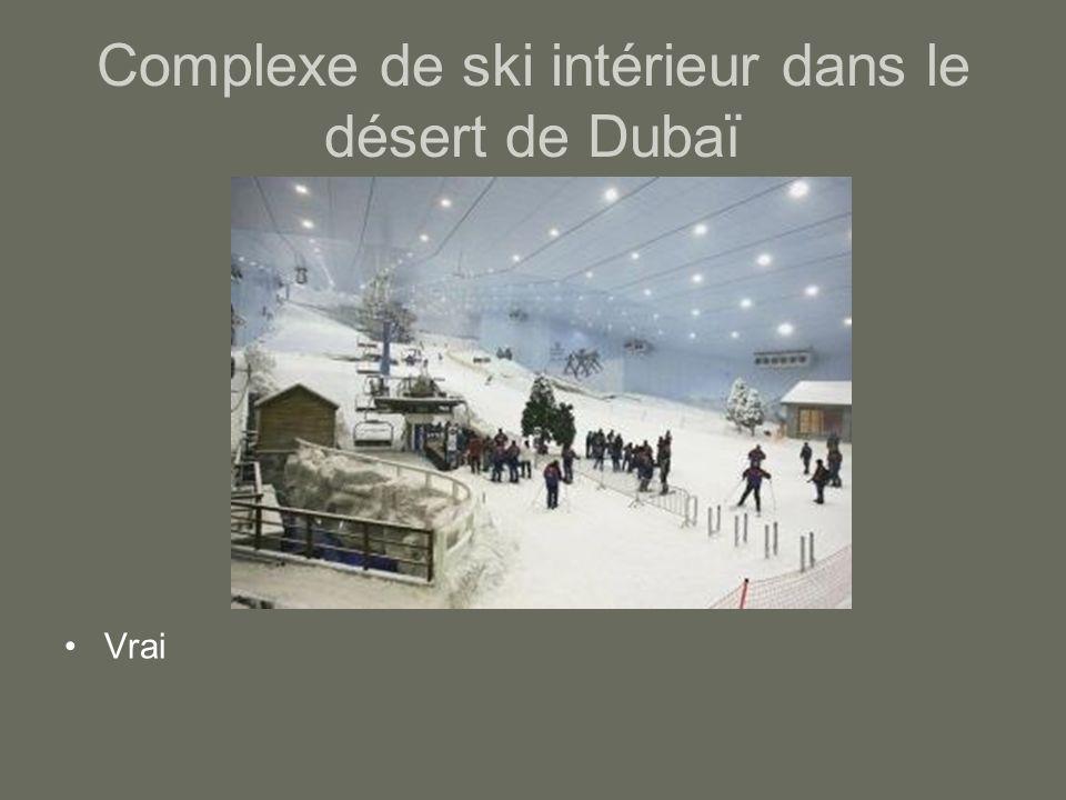 Complexe de ski intérieur dans le désert de Dubaï