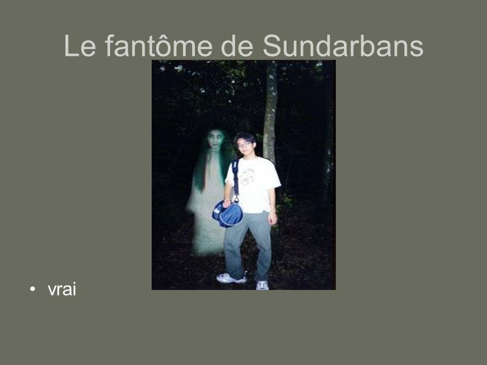 Le fantôme de Sundarbans