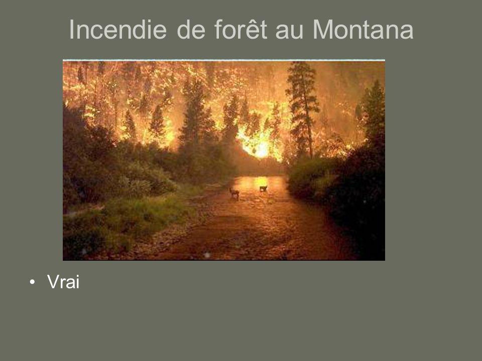 Incendie de forêt au Montana