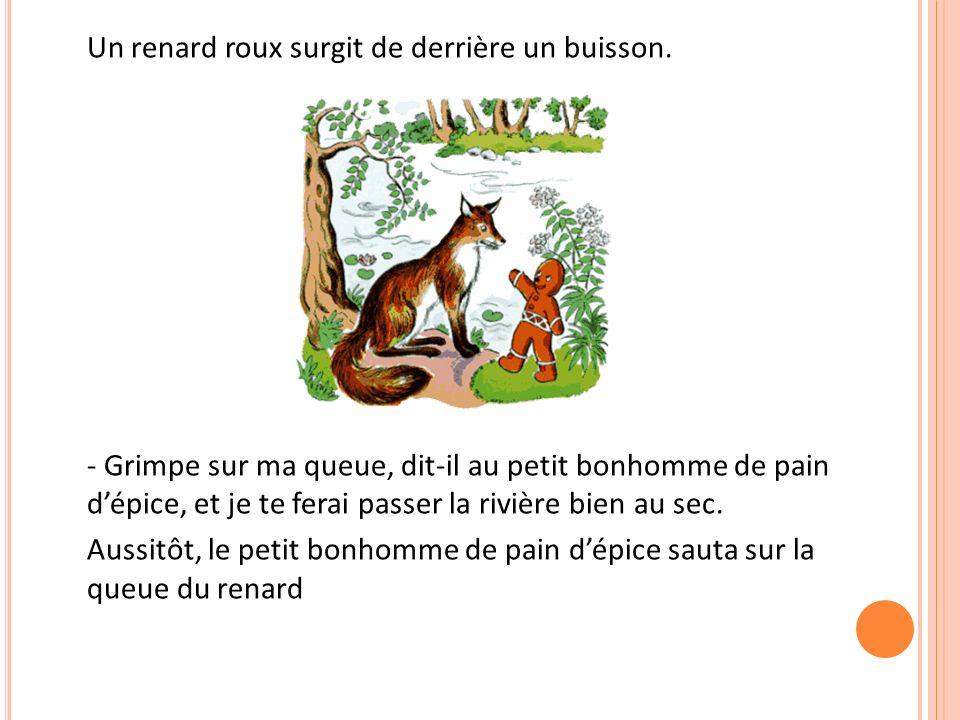 Un renard roux surgit de derrière un buisson.