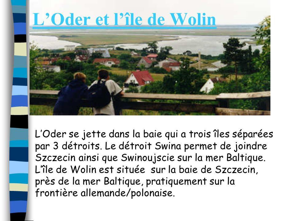 L'Oder et l'île de Wolin