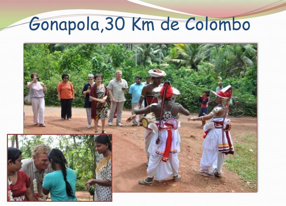 Gonapola,30 Km de Colombo