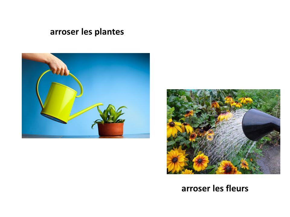 arroser les plantes arroser les fleurs