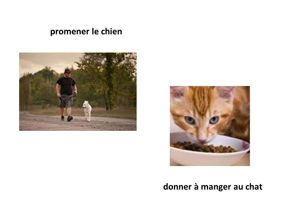 promener le chien donner à manger au chat