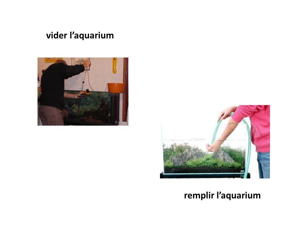 vider l'aquarium remplir l'aquarium
