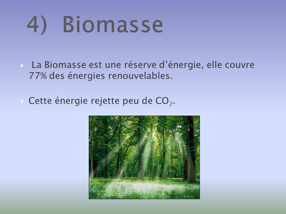 4) Biomasse La Biomasse est une réserve d'énergie, elle couvre 77% des énergies renouvelables.