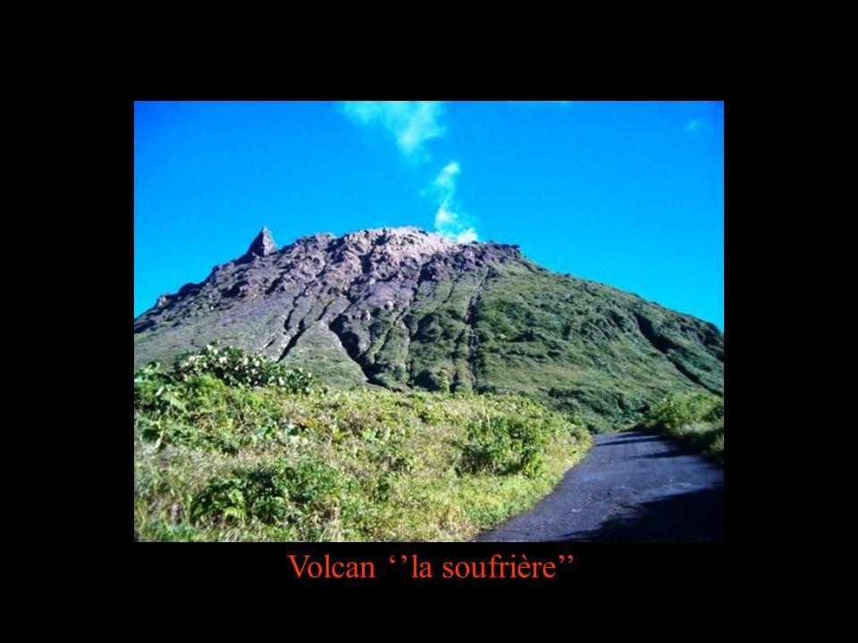 Volcan ''la soufrière''