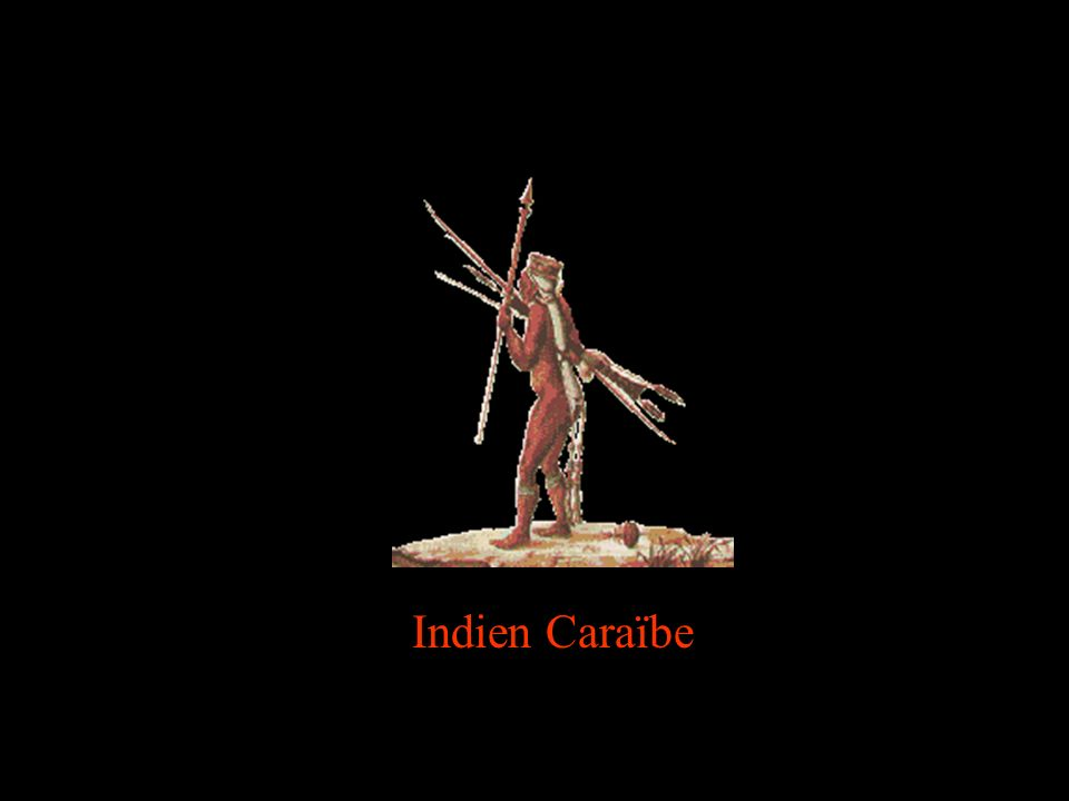 Indien Caraïbe