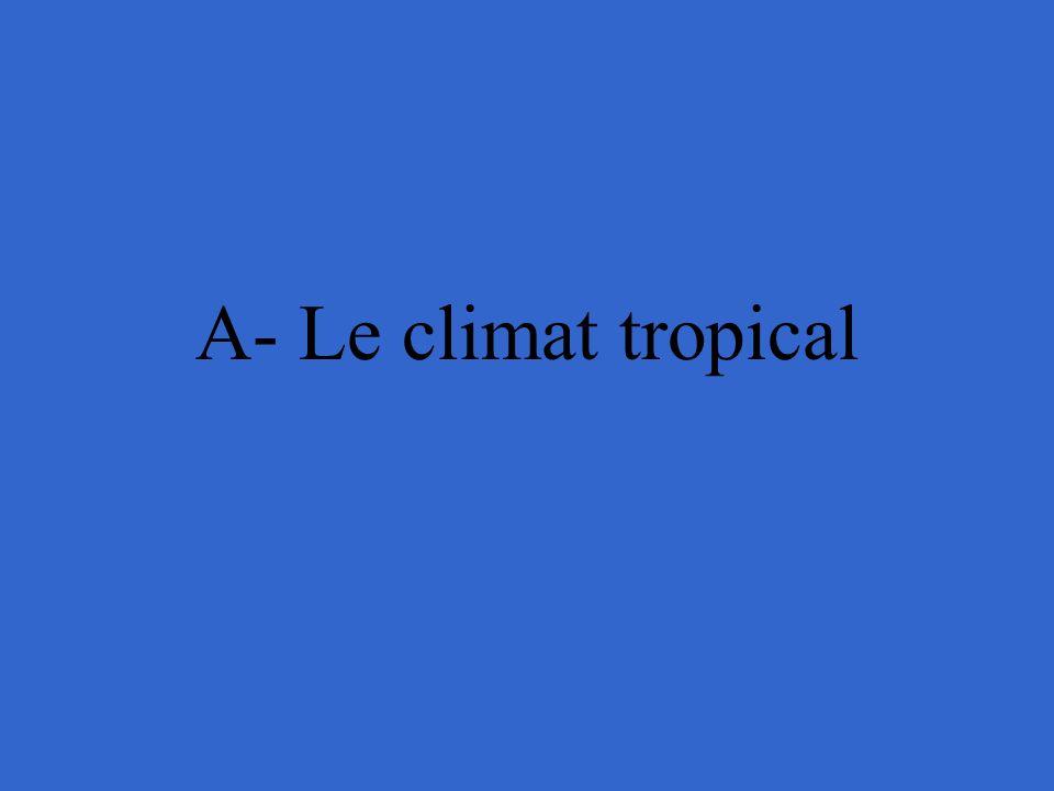 A- Le climat tropical