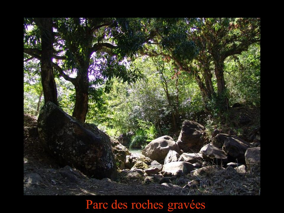 Parc des roches gravées