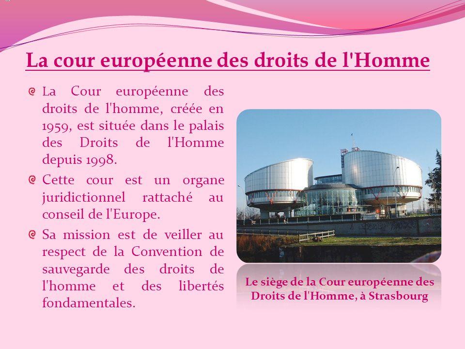 La cour européenne des droits de l Homme