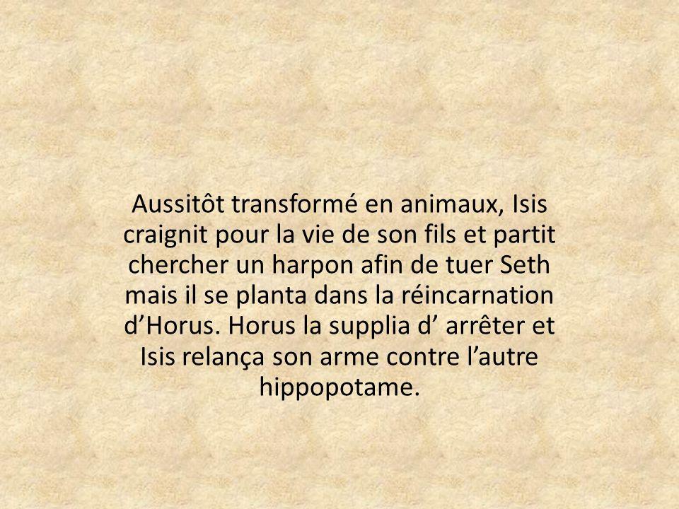 Aussitôt transformé en animaux, Isis craignit pour la vie de son fils et partit chercher un harpon afin de tuer Seth mais il se planta dans la réincarnation d'Horus.