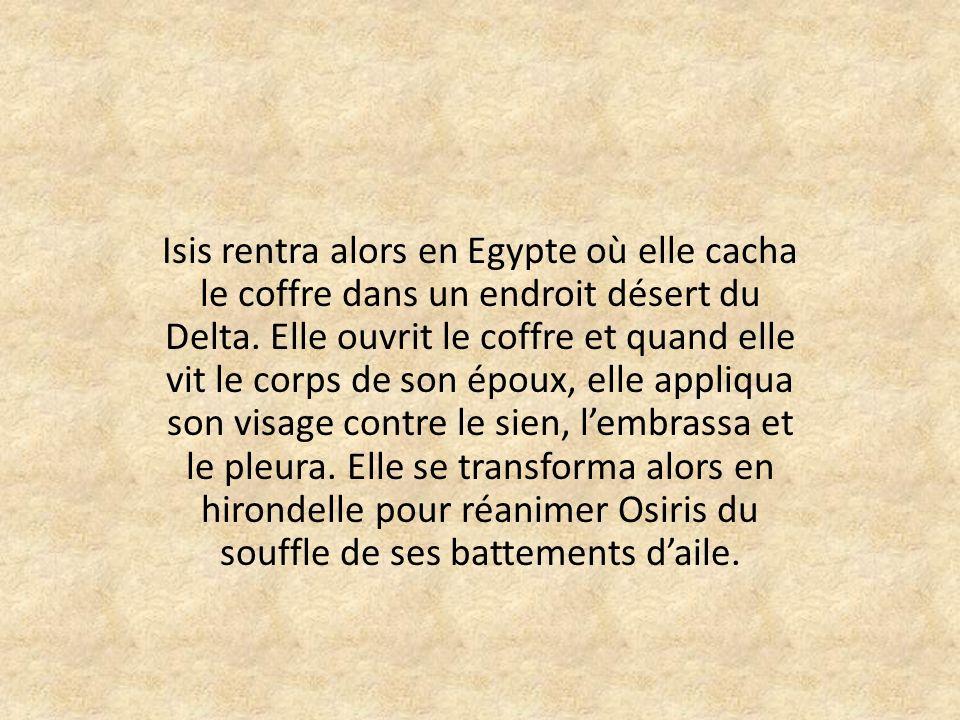 Isis rentra alors en Egypte où elle cacha le coffre dans un endroit désert du Delta.