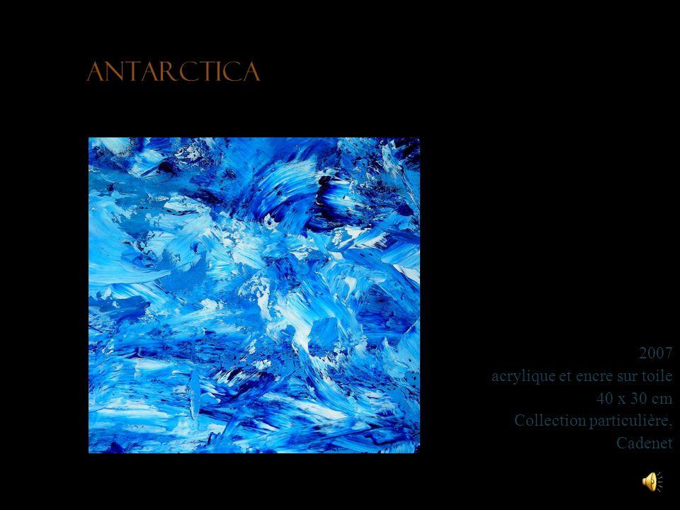 Antarctica 2007 acrylique et encre sur toile 40 x 30 cm