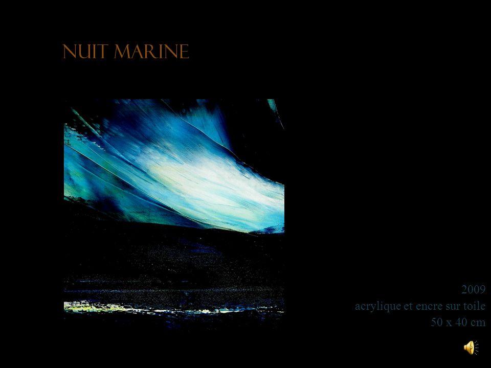 Nuit marine 2009 acrylique et encre sur toile 50 x 40 cm
