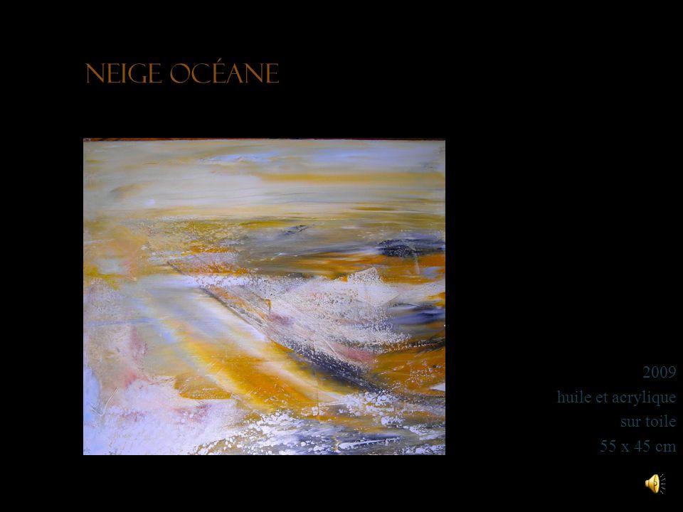 Neige océane 2009 huile et acrylique sur toile 55 x 45 cm