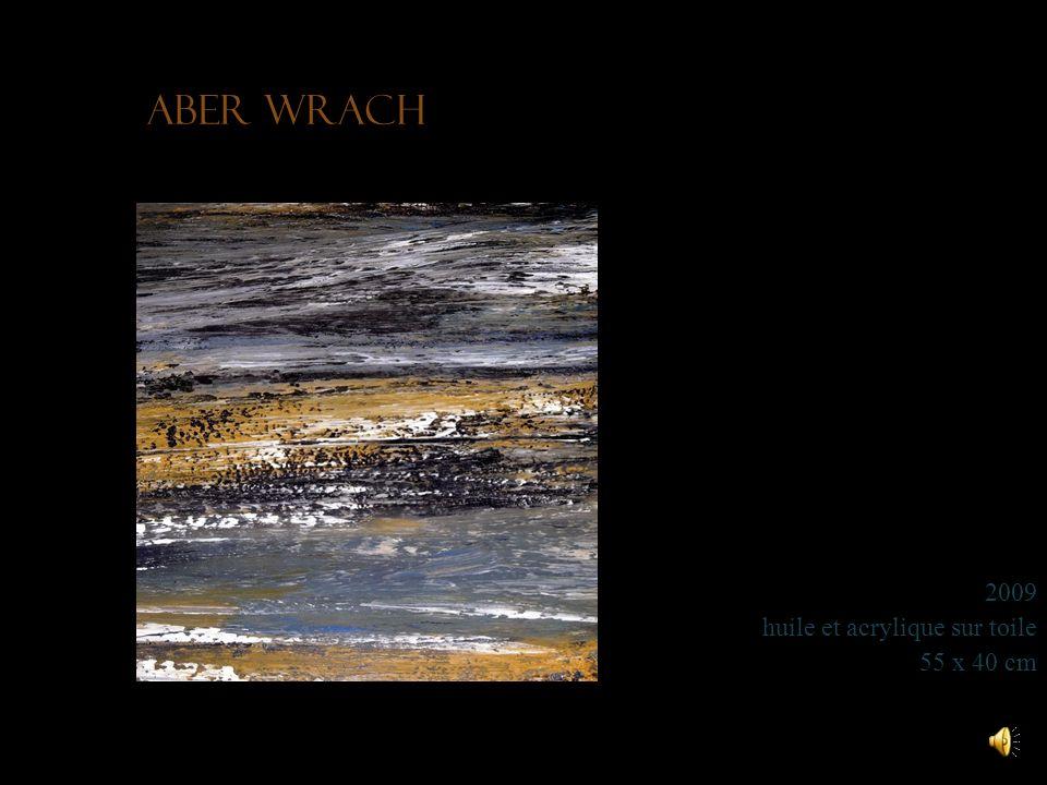Aber Wrach 2009 huile et acrylique sur toile 55 x 40 cm