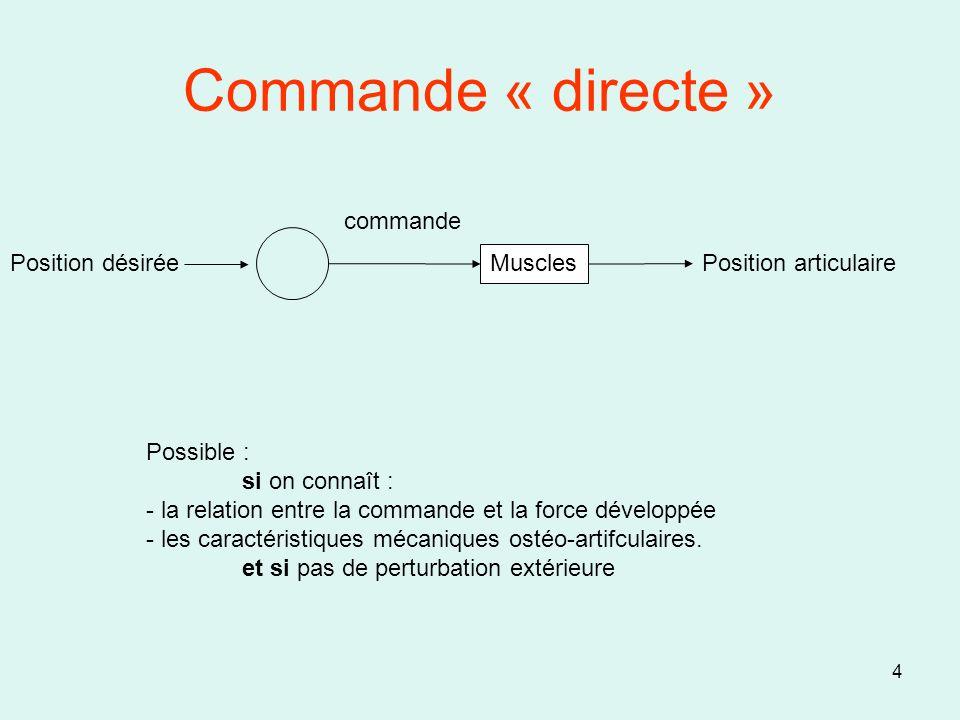 Commande « directe » commande Position désirée Muscles