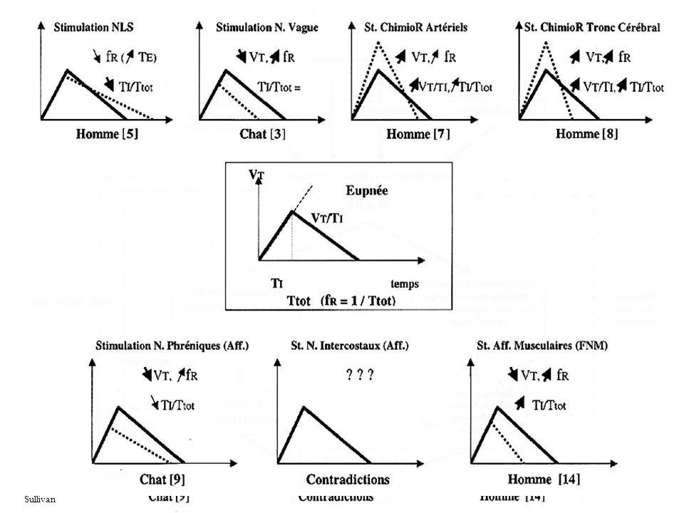 fR Fréquence respiratoire VT/TI vitesse inspiratoire moyenne