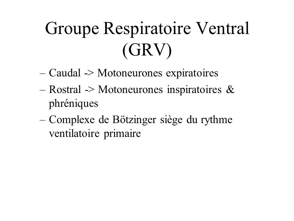 Groupe Respiratoire Ventral (GRV)